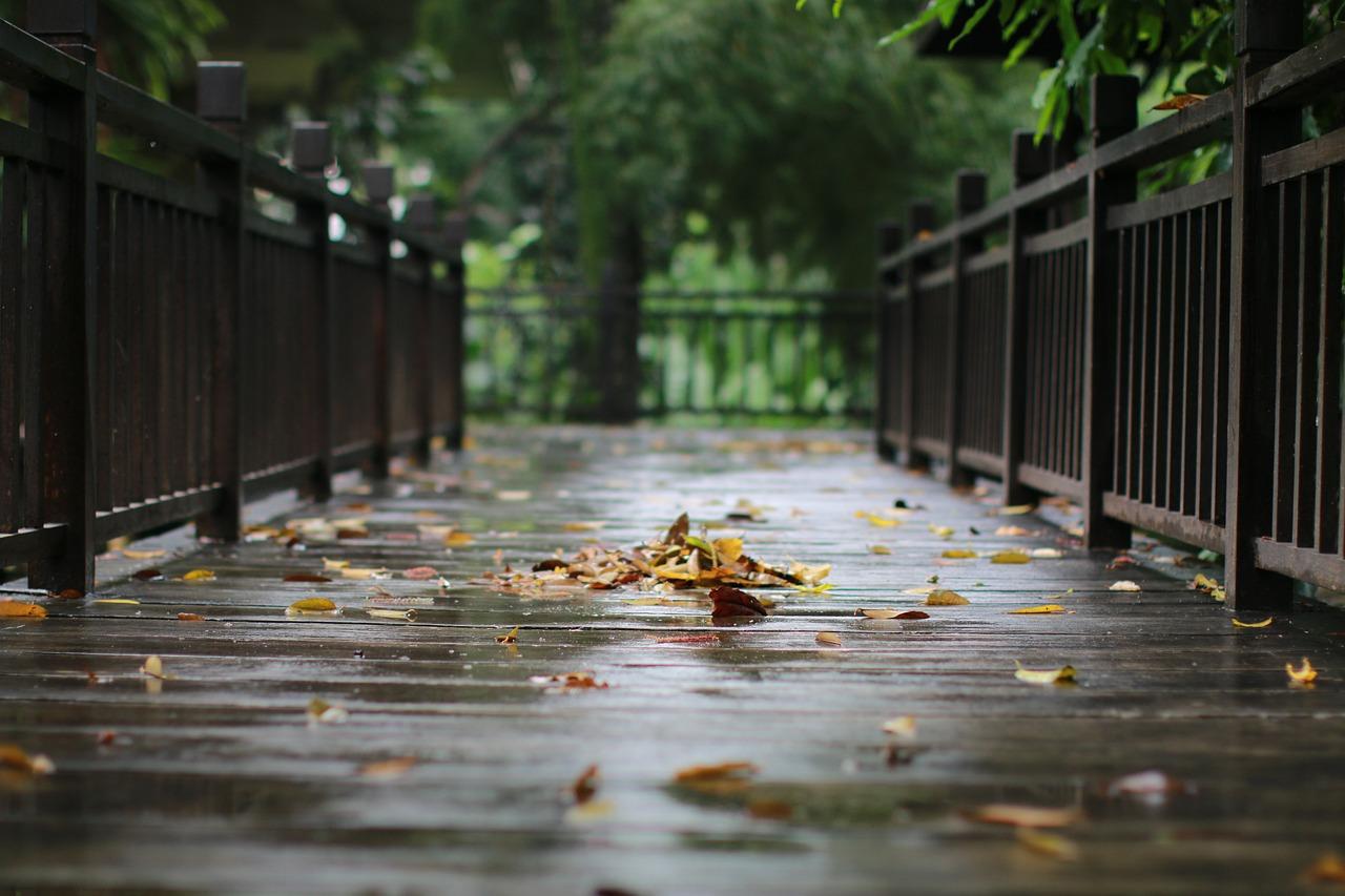 7 สิ่งต้องรู้ ในหน้าฝนนี้